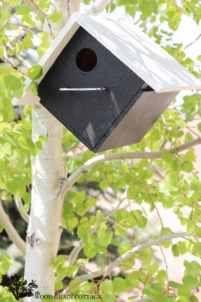 Bird House Makeover. Full tutorial by The Wood Grain Cottage
